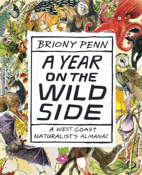 book cover A Year on the Wild Side by Briony Pen